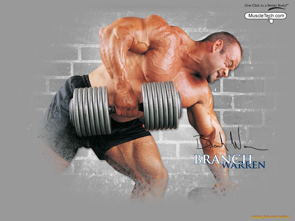 спорт, body, building